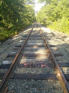 Railroad in the Pine Barren near Chatsworth factory